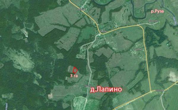 Продажа 3 га с/х назначения в Волоколамском районе