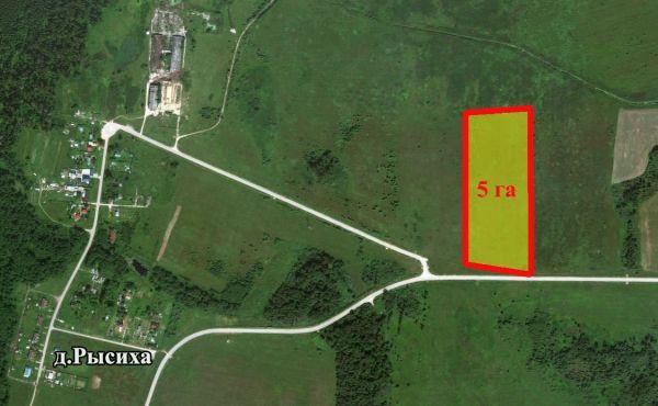 Земельный участок 5 га около деревни Рысиха Волоколамского района