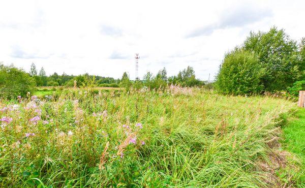Земельный участок в деревне Шелудьково Волоколамского района