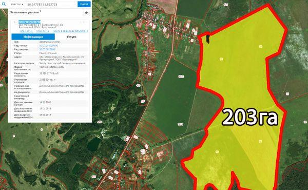 203 гектара земли сельскохозяйственного назначения в Волоколамском р-не